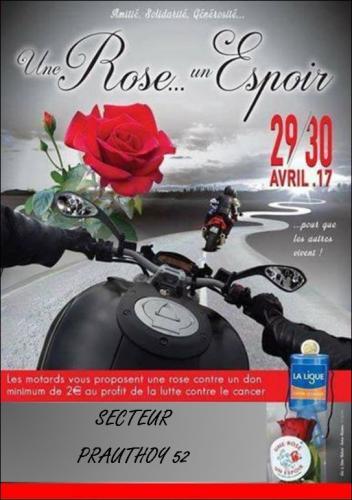 Affiche rose 2017