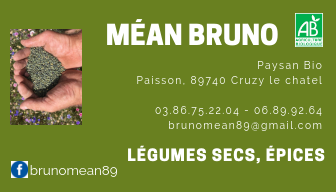 Mean bruno 1